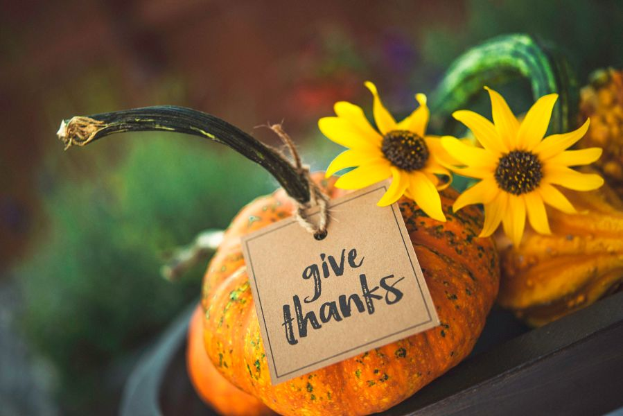 thanksgiving-still-life-background-with-pumpkins--gourds-and-message-601018438-59d6680d054ad90011a0fd63
